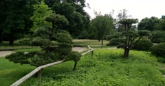 Moving and panning shot of the Japanese garden in Düsseldorf (Germany) Stock Footage