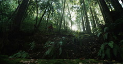 Mountain Bikers Hiking Past Sun Flare Slow Motion In Rain Forrest Tracking Shot Stock Footage