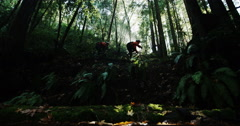 Mountain Bikers Riding Past Sun Flare Slow Motion In Rain Forrest Tracking Shot Stock Footage
