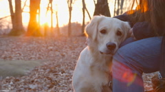 Best Friends - Walking the Dog on a Winter Day Stock Footage