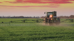green tractor spraying the wheat field with chemicalson sunset - stock footage