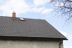 brown roof with chimney and Lightning conductor - blue sky, tree - stock photo