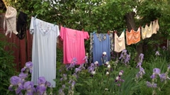 Woman underware drying on the rope Stock Footage