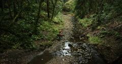 Two hikers in the rain forest walking their bikes through a stream Stock Footage