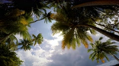 Gorgeous exotic Islands of the Maldives archipelago Stock Footage