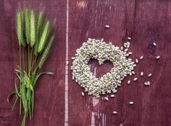 Peas, rice, wheat, beans and wheat stalk on old wood surface Stock Photos