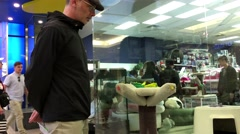 People watching small kitten playing at pet store inside Burnaby shopping mall. Stock Footage