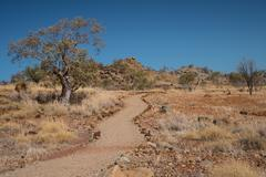 Outback Australia in drought - stock photo