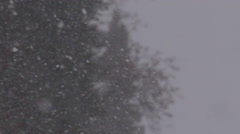 Snow-Fall.  Winter Cold Season Day - stock footage