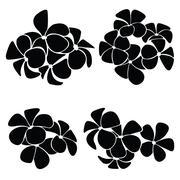 Frangipani silhouettes for design vector Stock Illustration