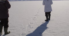 Tourist take pictures of polar bear tracks on sea ice Stock Footage