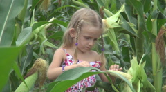 Child in Corn Field, Young Girl, Kid Playing in Agriculture Harvest, Children - stock footage