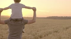 A Father Carries His Son on His Shoulders Walking Through a Wheatfield Stock Footage