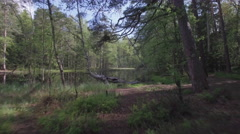 Flying in the middle of trees and beautiful pond in Finnish forest. - stock footage