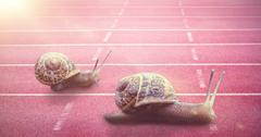 Snail on a white background against race track Stock Photos