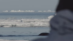 Tourist watches narwhals splash and dive in icy arctic water Stock Footage