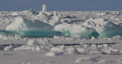 Sun shines on shifting sea ice with brilliant blue hues - stock footage