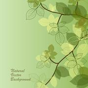 Natural background with green leaves Stock Illustration