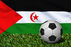 Soccer Ball on Grass with Western Sahara Flag Background, 3D Rendering - stock illustration