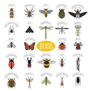 Insects icon flat style. 24 pieces in set. Colour version - stock illustration