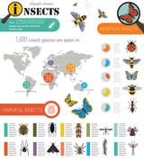 Insects infographic template - stock illustration