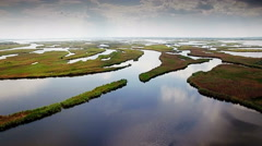 Aerial view of marshy river in the forest - stock footage