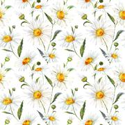 Watercolor daisy pattern - stock illustration