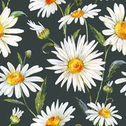 Watercolor daisy pattern Stock Illustration