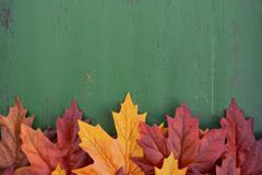 Autumn Fall Rustic Wood Background. - stock photo
