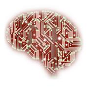 An illustration of a human brain shaped circuit board isolated on white Stock Photos