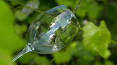 White wine poured into glass - stock footage