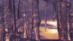 Setting sun is reflected in icicles. Move the focus Stock Footage