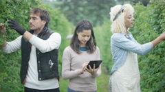 4K Portrait of smiling farm workers checking fruit crop with computer tablet Stock Footage