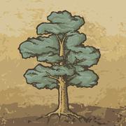 Oak tree sketch Stock Illustration