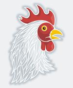 Gray rooster's head Stock Illustration