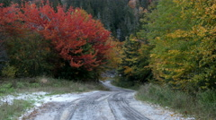 Fall Colors Rural Road Timelapse Stock Footage