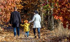Two Generation Family Walking in Autumnal Forest Rear View Stock Photos