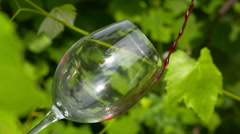 Red wine poured into glass - stock footage