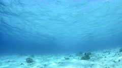Sunlight Filters Through Blue Water 3 Stock Footage
