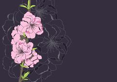 Apple tree flowers Stock Illustration