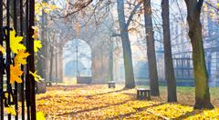 autumn colonade with a gateway - stock photo