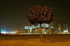 Tree growing in urban lot - stock photo