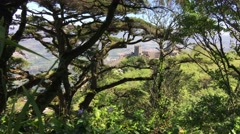 The Castle of the Moors in Sintra Portugal Stock Footage
