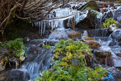 Rapid Mountain Creek and Frozen Icicles Stock Photos