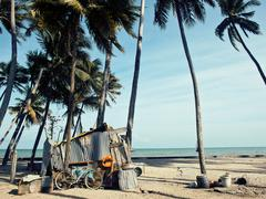 Little vietnamese house on seacoast among palms and sand Stock Photos