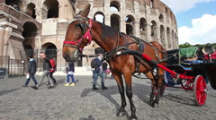The Colosseum Horses Stock Footage