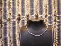 Close-up of necklace displayed on mannequin against velvet in store Stock Photos