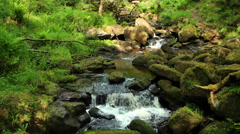 Cascade on Burbage Brook in Padley Gorge, Peak District, England. Steady shot 4K Stock Footage