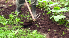 Hoeing soil in slow motion Stock Footage