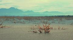 Vast lake of Yala national park at sunset in Sri Lanka. Wild nature ecotourism  Stock Footage